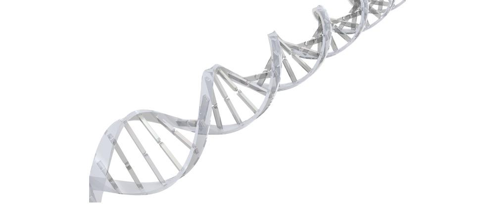 Une nouvelle méthode pour le diagnostic rapide et peu onéreux des maladies génétiques